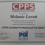 Best Certified Pet Sitter in Boulder CO